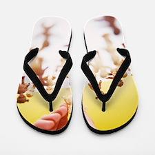 Adoption Flip Flops