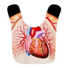 Human heart, artwork Bib