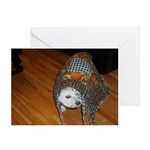 LUCKY DOG GREETING CARDS (Pk of 10)