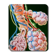 Illustration of lung bronchioles and alv Mousepad