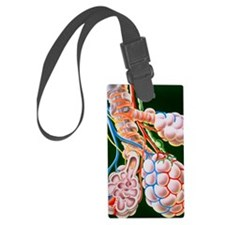 Illustration of lung bronchioles Luggage Tag