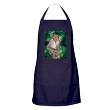 Southern pig-tailed macaque Apron (dark)