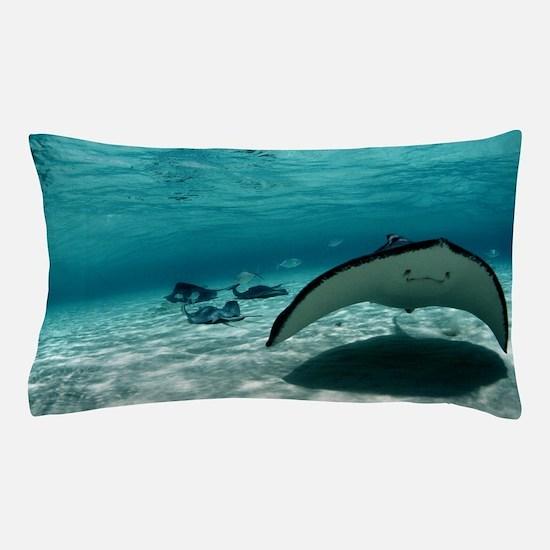 Southern stingray Pillow Case