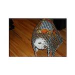 LUCKY DOG RECTANGLE MAGNET