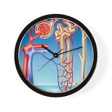 Kidney filtration system Wall Clock