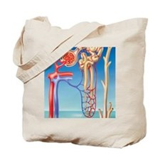Kidney filtration system Tote Bag