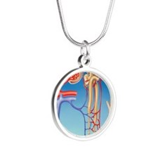 Kidney filtration system Silver Round Necklace