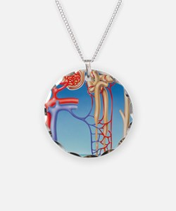 Kidney filtration system Necklace