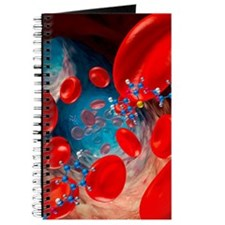Red blood cells and molecules, artwork Journal