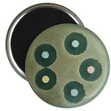 Anthrax antibiotics research Magnet