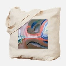 Artwork of foetus examined by amnioscope  Tote Bag