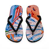 Liver Flip Flops