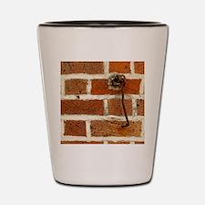 Latch Hook on Brick Wall Shot Glass