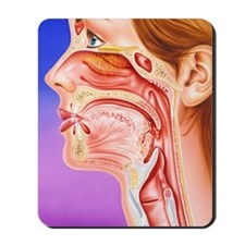 Nose, mouth and throat Mousepad