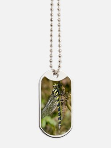 Sombre goldenring dragonfly metamorphosis Dog Tags