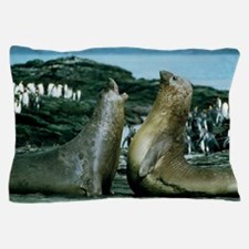 Southern elephant seals Pillow Case