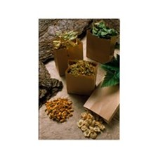 Assortment of herbal teas Rectangle Magnet