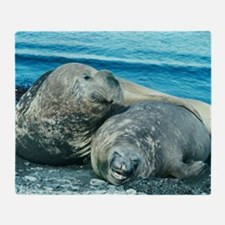 Southern elephant seals Throw Blanket
