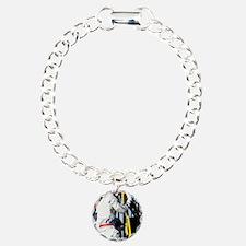 Soyuz TMA-11 space crew Bracelet