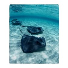 Southern stingrays Throw Blanket