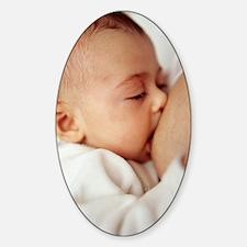 Baby girl breastfeeding Decal