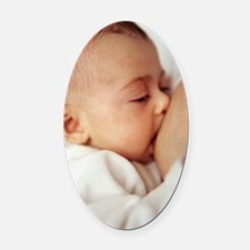 Baby girl breastfeeding Oval Car Magnet