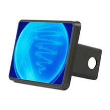 Bacterial culture Hitch Cover