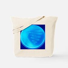 Bacterial culture Tote Bag