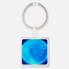 Bacterial culture Square Keychain