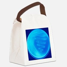 Bacterial culture Canvas Lunch Bag