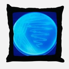 Bacterial culture Throw Pillow