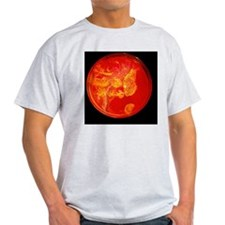 Bacterial colonies T-Shirt