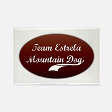 Team Estrela Rectangle Magnet (100 pack)