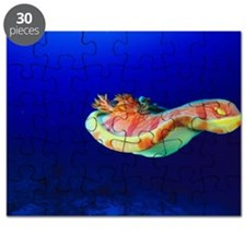 Spanish dancer sea slug Puzzle