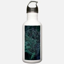 Spider's web, covered  Water Bottle