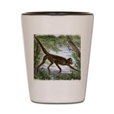 Spider monkey, historical artwork Shot Glass