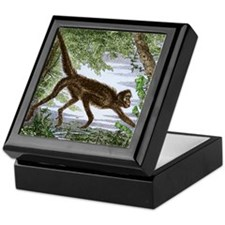 Spider monkey, historical artwork Keepsake Box