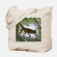 Spider monkey, historical artwork Tote Bag