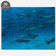 Spinner dolphins Puzzle
