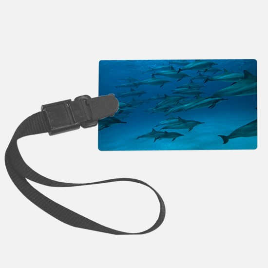 Spinner dolphins Luggage Tag