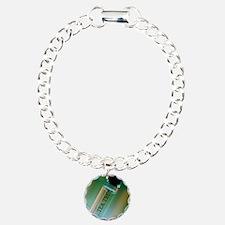 Bottle of essential oil  Bracelet