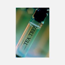 Bottle of essential oil from tea  Rectangle Magnet