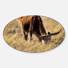 lone steer Decal