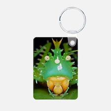 Spiny bush cricket Keychains