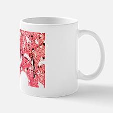 Sponge tissue, light micrograph Mug