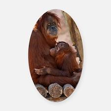 (12p) Orang Mother  Child 7372 Oval Car Magnet