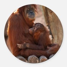 (12p) Orang Mother  Child 7372 Round Car Magnet