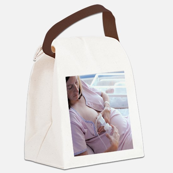 Breast pump Canvas Lunch Bag