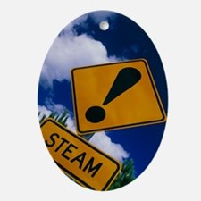 Steam warning sign at a geothermal p Oval Ornament