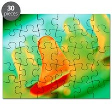 Collection of male condoms Puzzle